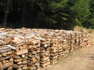 Firewood seasoned for over 1 year for Sale in Lake Oswego, OR