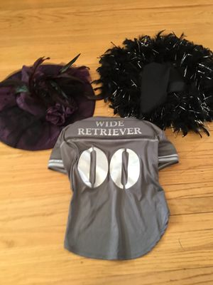 Misc. Halloween Costume Pieces: Witches Hats and Dog Football Costume for Sale in Feasterville-Trevose, PA