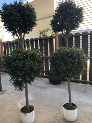 Artificial Plants for Sale in Santa Ana, CA