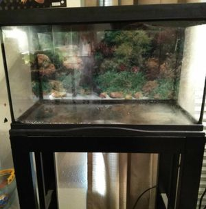 10 gallon tank and stand (both) for Sale in Port Neches, TX