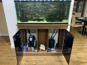 55 gallon fish tank with stand. for Sale in Wayne, NJ
