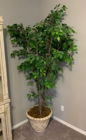 Artificial house tree / plant for Sale in San Diego, CA