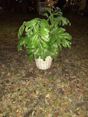 Indoor fake plant with wicker basket for Sale in Clearwater, FL
