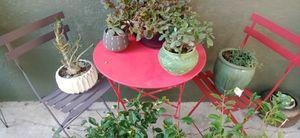 Patio furniture and plants for Sale in Austin, TX
