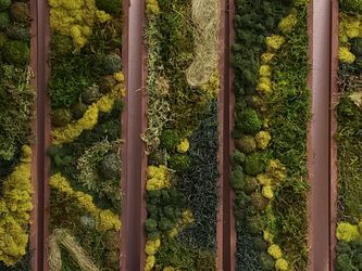 Moss Wall Art Custom Made To Order for Sale in Hayward,  CA