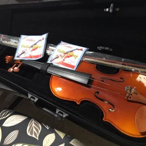 Violin for Sale in HALNDLE BCH, FL