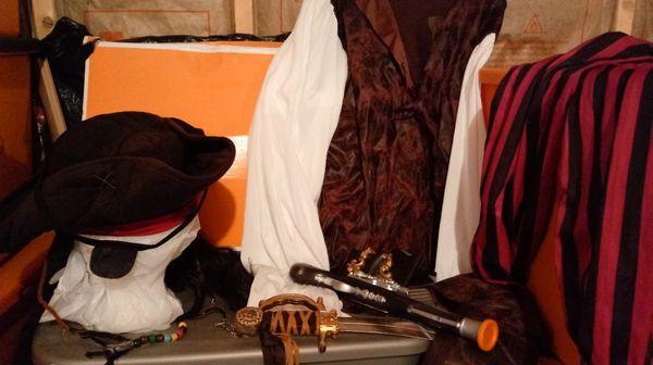 Halloween Pirate Costume