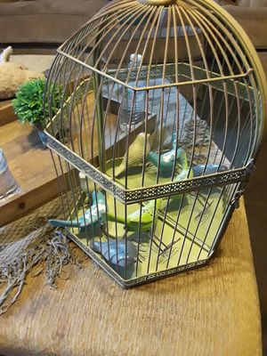 Bird cage decor for Sale in Fort Worth, TX