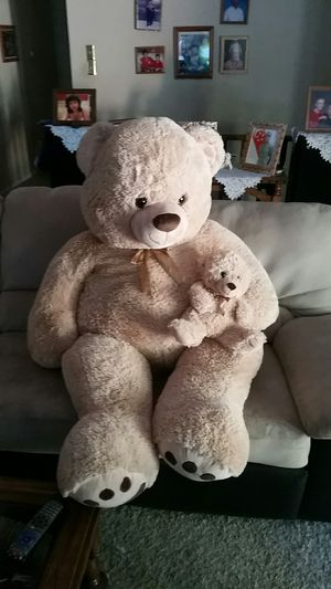 Large teddy bear for Sale in Manchester, MO