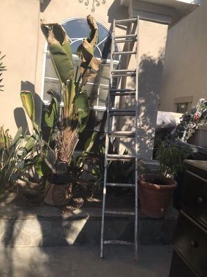 15 foot ladder for Sale in Upland, CA