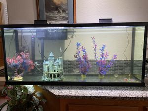 50 gal fish tank with fish and extras!! for Sale in DEVORE HGHTS, CA