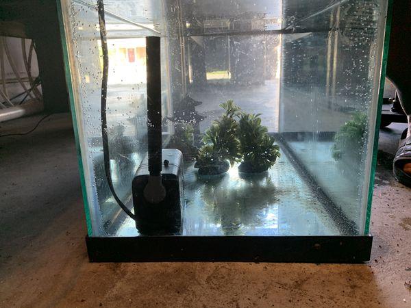 20 gallon long fish tank aquarium with filter, top and working light