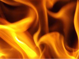 XXL Firewood Bundles 5-4-$20 for Sale in Arroyo Grande, CA