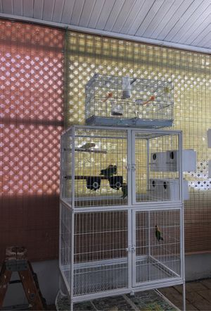 Cages for birds for Sale in Hialeah, FL