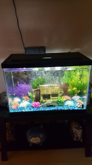 Fish tank with everything for Sale in Odenton, MD