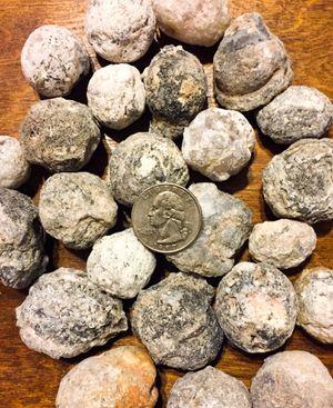 Break your own Geodes for Sale in La Porte, TX