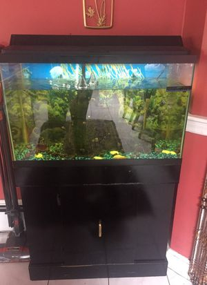 Fish tank for Sale in Revere, MA