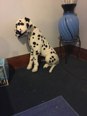 Dalmatian dog for Sale in Cleveland, OH