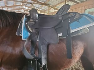 "16"" Saddle for Sale in Tampa, FL"