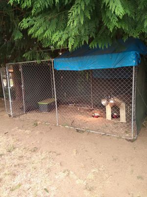 Dog kennel ***PENDING PICK UP SATURDAY 9/19*** for Sale in Federal Way, WA