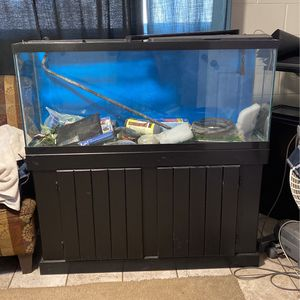 Fish Tank With Stand /Accessories /filter 48x21 X12 for Sale in Compton, CA