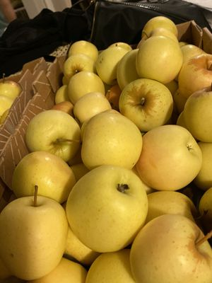 Organic Apples for Sale in San Leandro, CA