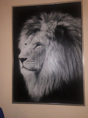 Lion painting for Sale in Burbank, CA