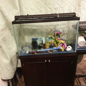 29gal Fish Tank for Sale in Woodburn, OR