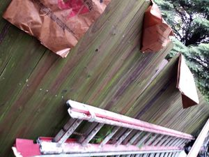 32ft fiberglass ladder for Sale in St. Louis, MO