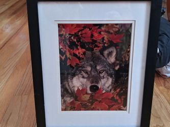 12 1/2x 15 1/2 Picture Frame for Sale in Colorado Springs,  CO