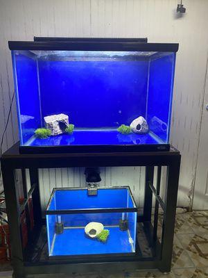 45 gallon 10 gallon fish tank for Sale in Elgin, IL