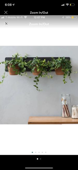 Magnolia home large wall plant hanger for Sale in Gilbert, AZ