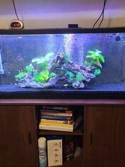 complete aquarium set up for Sale in San Jose,  CA