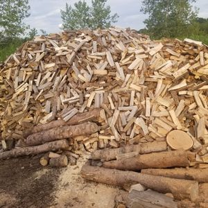 Firewood. For sale fase cord $ 120. Delivery free for Sale in Chicago, IL