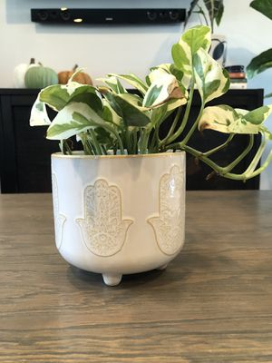 Planter pot plant not included for Sale in National City, CA
