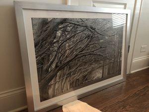 Z Gallerie oversized art - black and white photograph for Sale in La Grange, IL