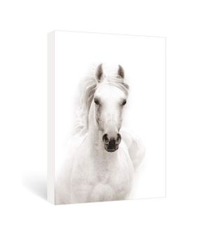 Black and White Horse Canvas Print. 16x24 Ready to Hang. Farmhouse Animal Canvas Wall Art. for Sale in Mission Viejo, CA