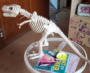 "T-rex skeleton 17""×32"" for Sale in Mesa, AZ"