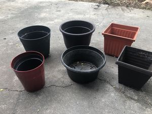 Plant, flower pots for Sale in Colorado Springs, CO