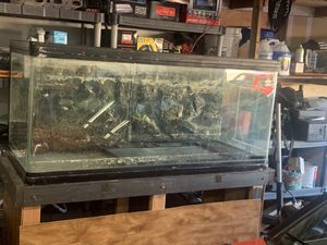 "fish tank 59""long by 24"" wide by 28"" tall for Sale in Fairfield, CA"