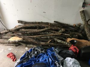 Free wood for fire for Sale in Tacoma, WA