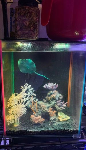 8 gallon led glo fish tank for Sale in Covina, CA