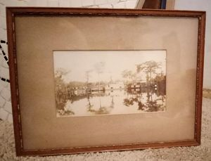 """Antique Silver Springs Florida 1880's Albumen Silver Photograph Mounted on Board in Period Frame 12.25"""" x 9.25"""" Overall for Sale in Orlando, FL"""