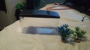 Beta fish tank for Sale in Severn, MD