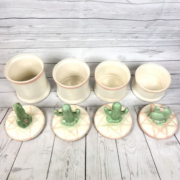 4 piece Southwestern Cactus Kitchen Display Storage Containers