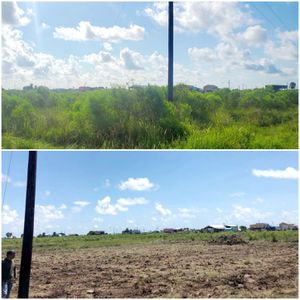 LIMPIEZA DE TERRENO (( UNDERBRUSHING)) for Sale in Tomball, TX