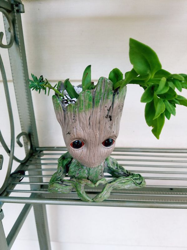 Groot heart planter head with succulent