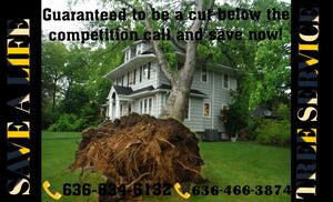Tree service for Sale in Perry, MO