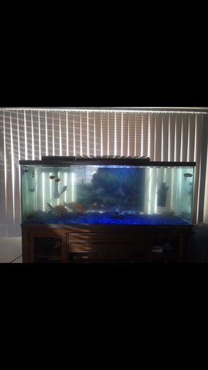 Fish tank 120 gallon for Sale in Bloomington, CA