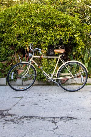 1970 Vintage All Pro 3 Speed Bicycle for Sale in San Gabriel, CA